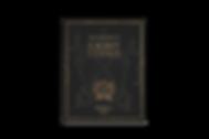 Light Codes By Laara Journal