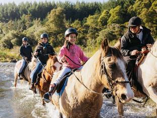 Horse Trekking - Turangi