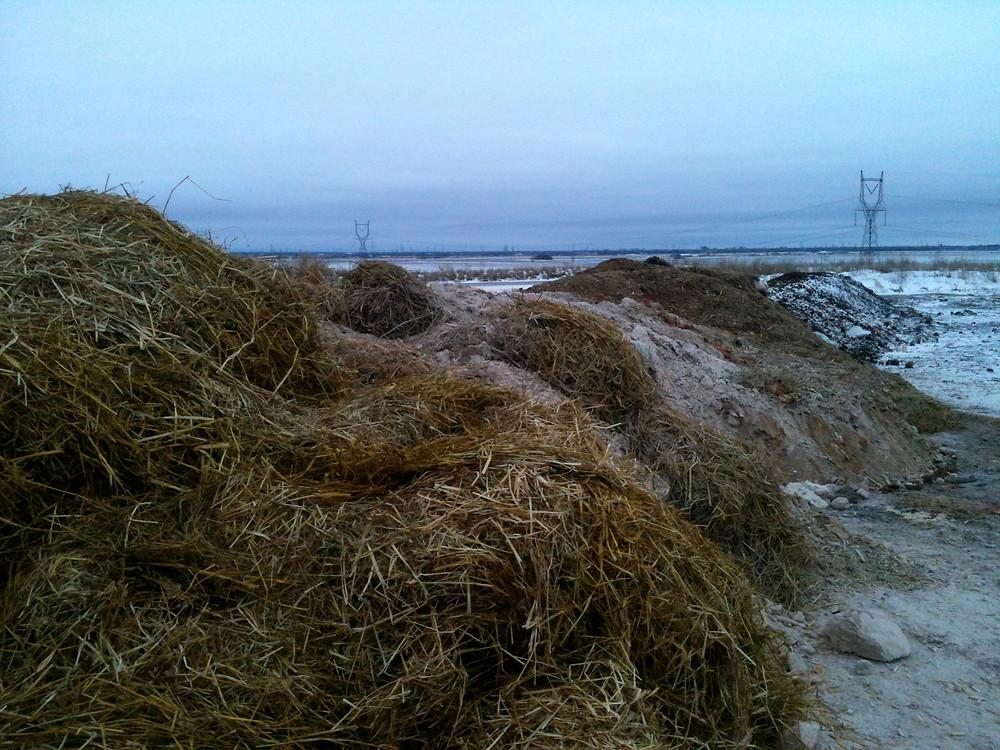 Windrow compost site near Winnipeg