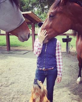 HorsesFBCover.jpg