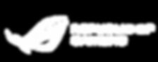 logo_rog.png