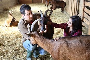 biobruni, goats, farm, dairy, organic, italy holiday, samuele bruni, lisa bruni