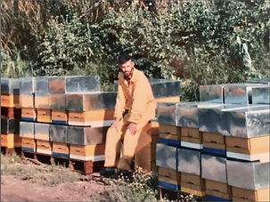 biobruni, bees, farm, honey, organic, italy holiday, osvaldo bruni