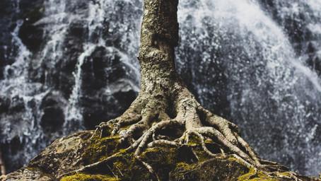 5 - Connaître ses ressources pour mieux gérer son stress