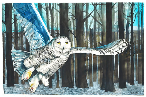 Snowy Owl- Original Watercolor
