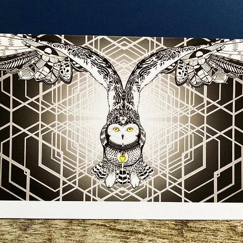 Solstice Owl Greeting card
