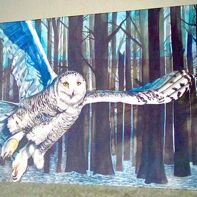 snowy owl card web.jpg