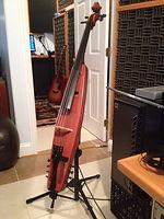 Michael Damon Composer Custom Cello