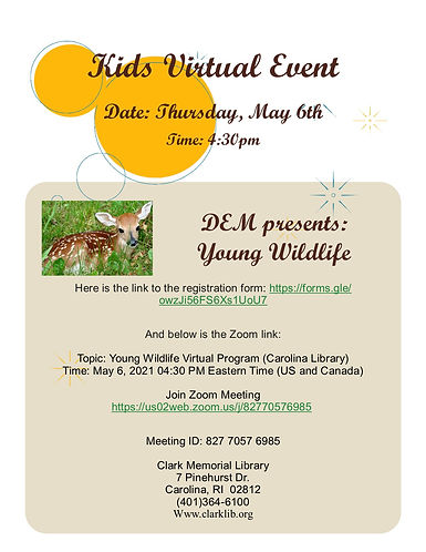 young wildlife poster.jpg