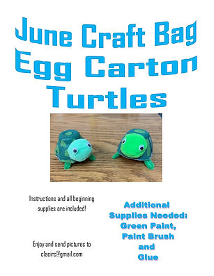 June craft bag turtles.jpg