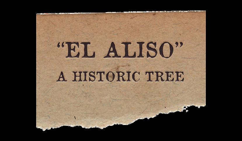History El Aliso headline 2.5.png