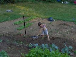 Hobbit farmer