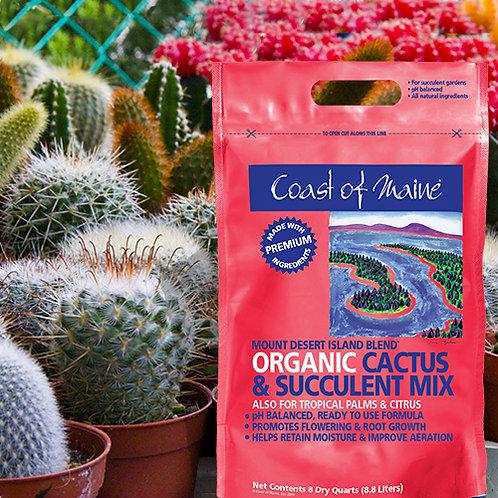 Organic Cactus & Succulent Mix