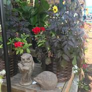 Custom Planters ,Concrete Owl, & Hedghog