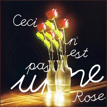 merci pour les roses, merci pour les épines