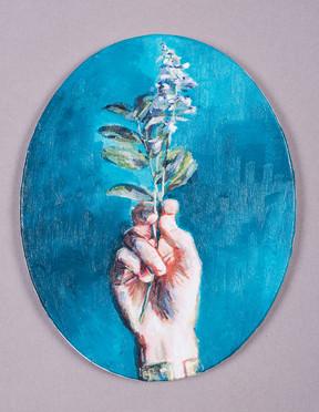 piu fiori - lenticchio