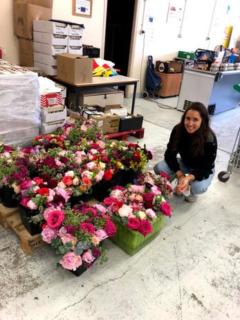 quand les fleurs nous sauvent_l'associat