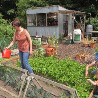 Garden-2-1110x833.jpg