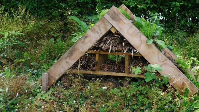 clarence gardens 06 - phil neath.jpg