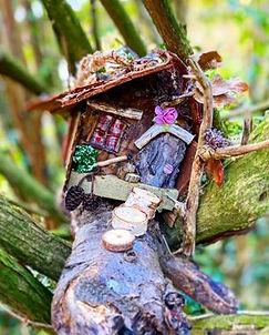 Fairy house on tree.jpg