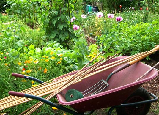 YUMI Garden