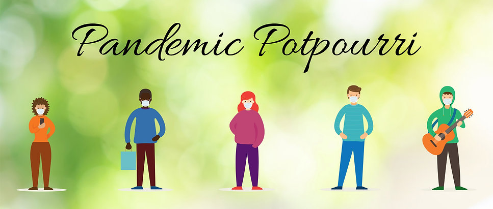 pandemic-potpourri-trivia-web-site.jpg