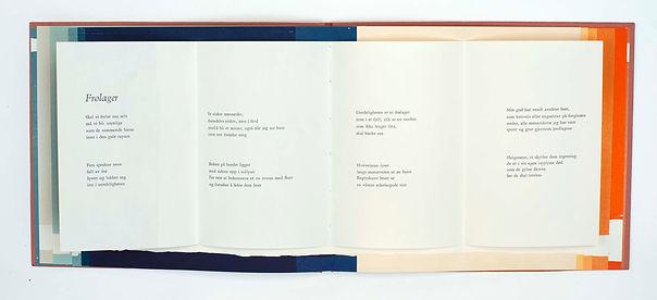 07_WEB_VLORourke_Artist Book 2020.jpg