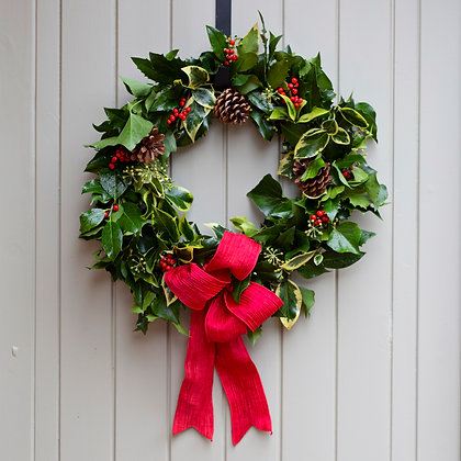 Traditional Holly