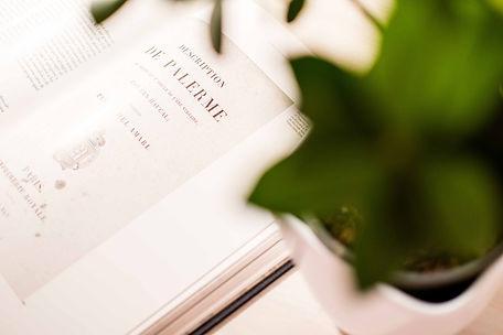 """Libro sulla storia di Palermo. Particolare del libro aperto con su scritto """"Description de Palerme"""" e foglie di pianta sfocate in primo piano"""