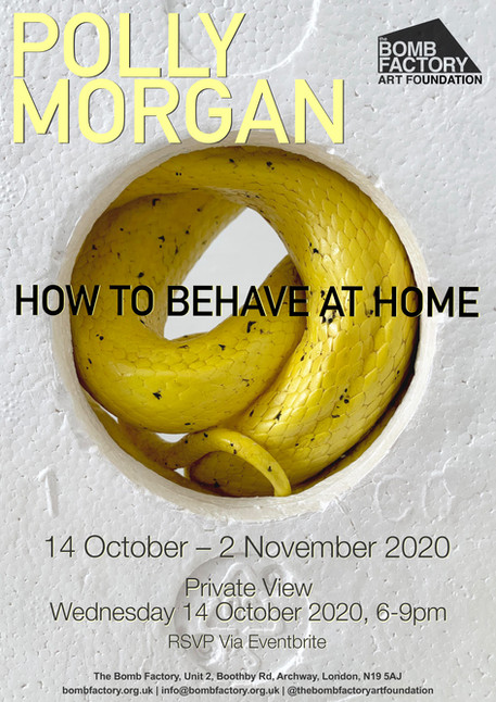 Polly Morgan - How to Behave at Home