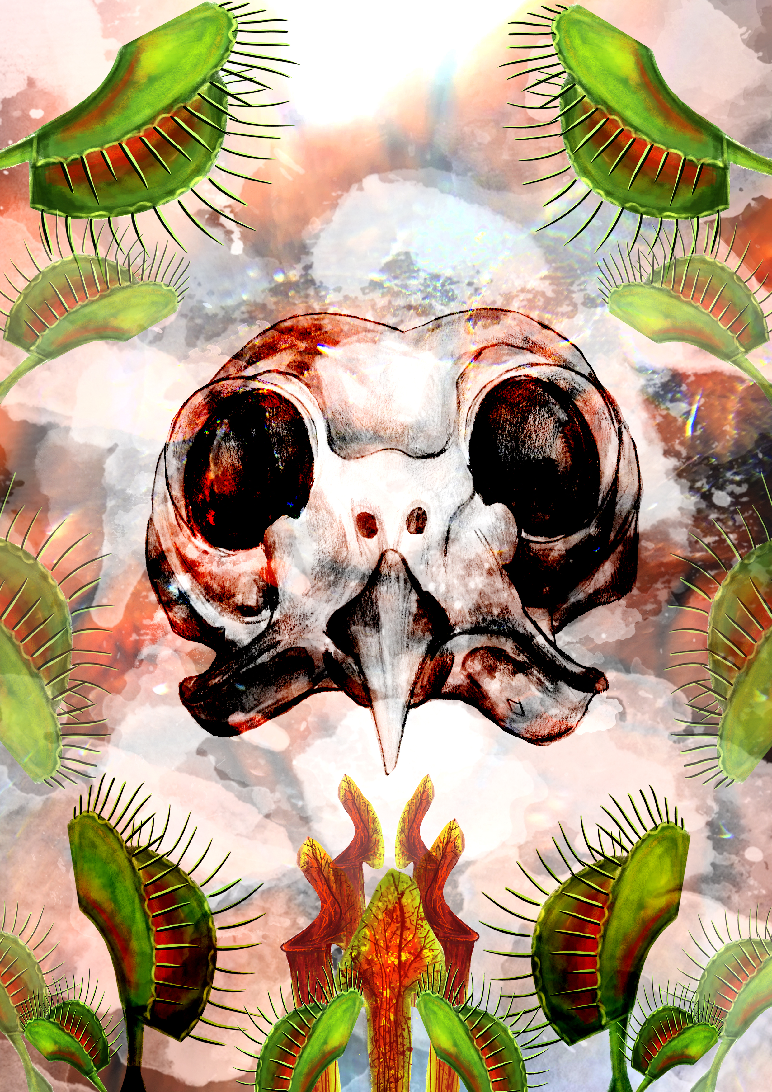 Owl Skull and Deadly Plants