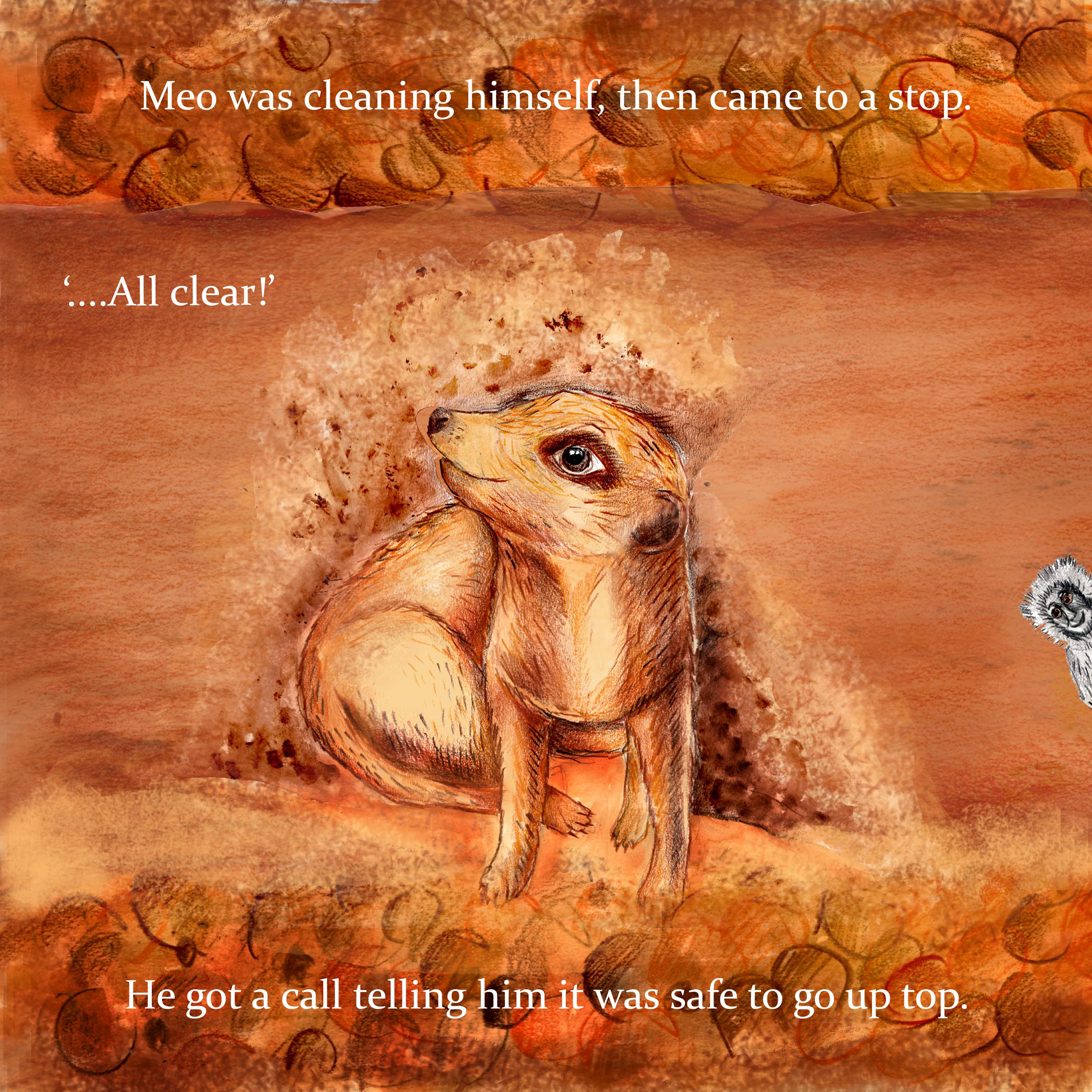 Meo the Meerkat (2016)