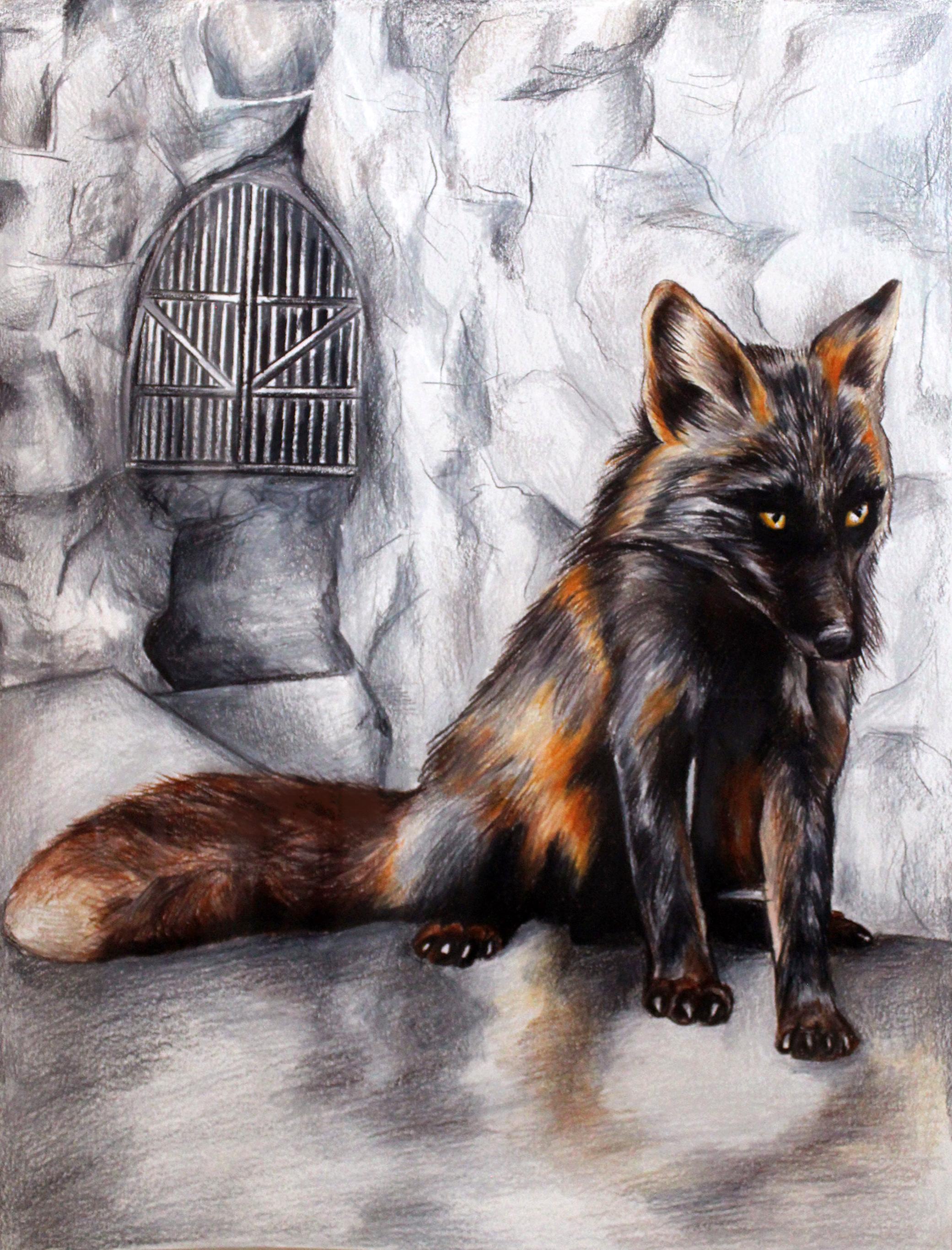 Dark Fox Comission