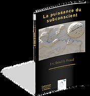 guide-la-puissance-du-subconscient.png
