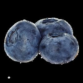 CBD_OEM_flavor-blueberries.png