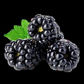 CBD_OEM_flavor-honey-sticks-blackberries