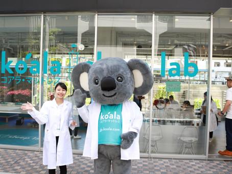 Koala Sleep Lab POP UP STORE @LINE-UP STORE