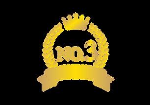 no.3.png