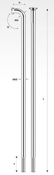 P7-PSR2.jpg