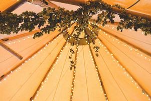 Fairy Lights poles drape.JPG