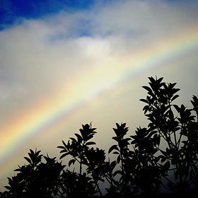 canvas 2 rainbow.jpg
