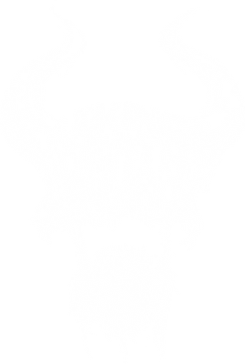 vds skull logo.png