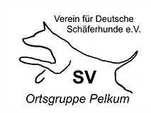 Logo13.jpg.png