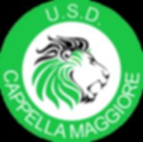 Logo Leone Circolare.png