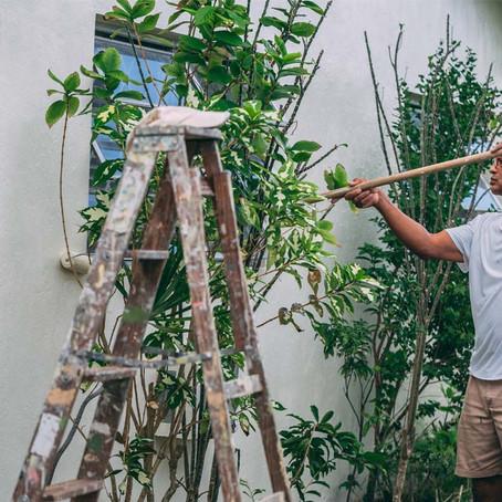 Best Aussie Suburbs To Find A Renovator's Dream