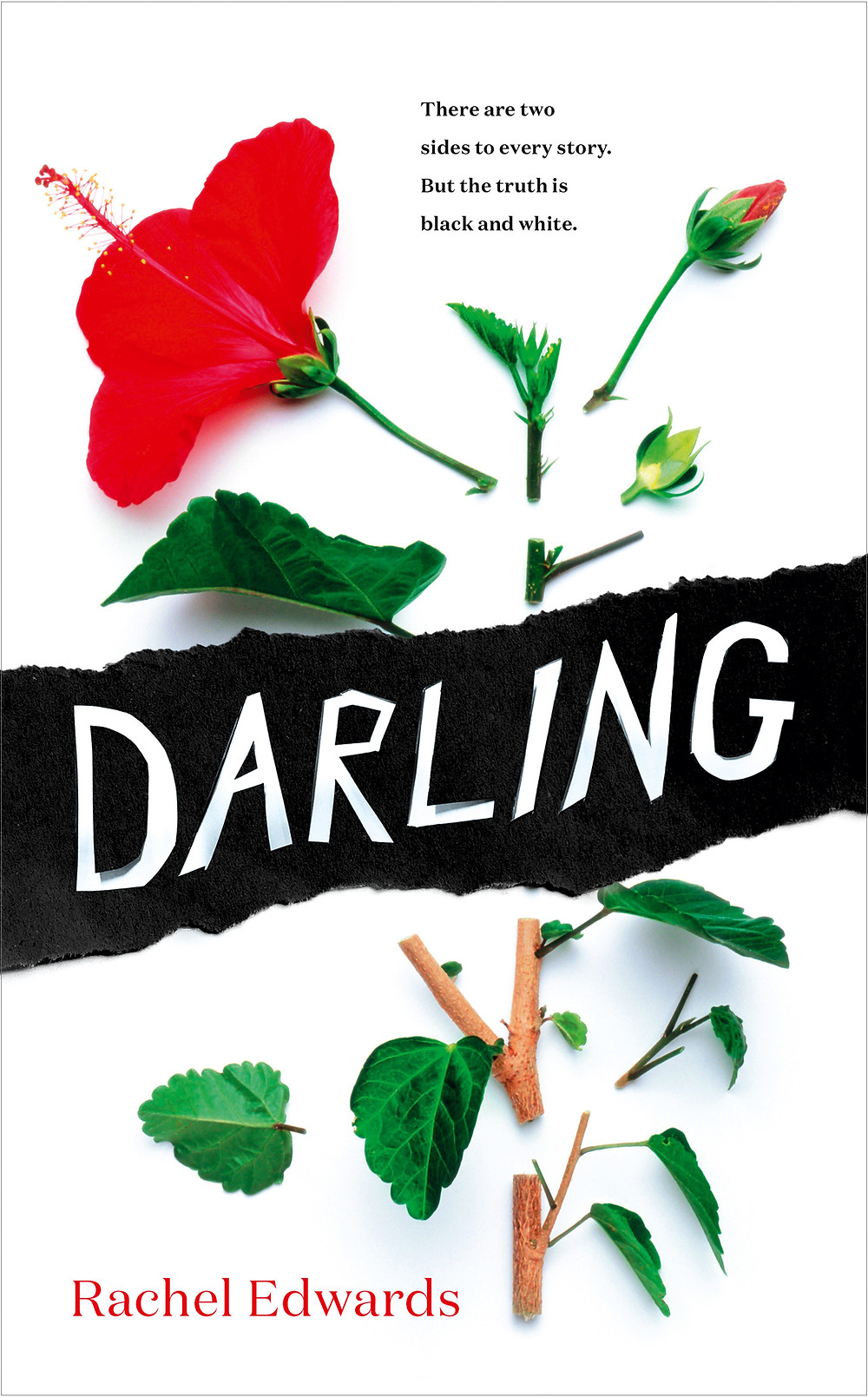 Darling by Rachel Edwards, The Riff Raff