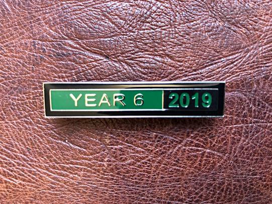 Year 6 2019