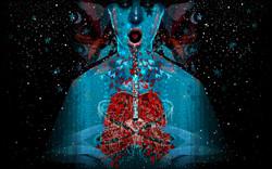 The-Way-To-Dream-rebecca-hendin-illustration-1601pix.jpg