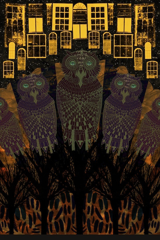 Rebecca Hendin: Owls