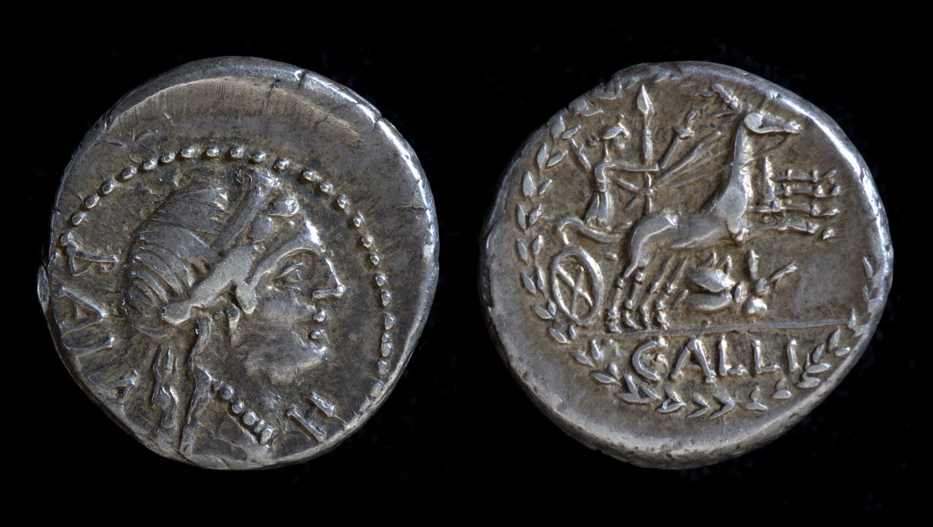 C. Allius Bala, 92 BC, C. 336/1b